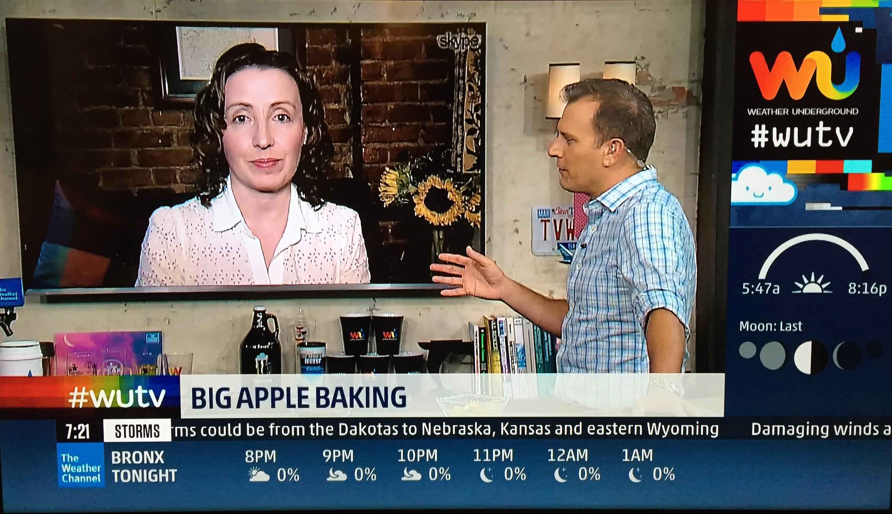 Melissa Fleming appears on WUTV, July 26, 2016.
